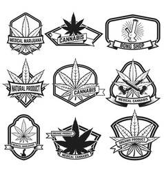 cannabis labels medical marijuana design elements vector image
