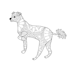 Chinese crested dog coloring for adults vector image