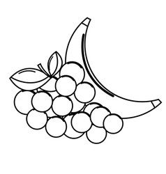 silhouette grape and babana fruit icon vector image