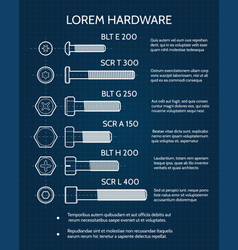 screw and screw heads technical blueprint vector image