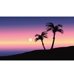 At morning silhouette in beach vector image
