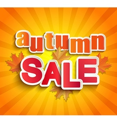 Autumn sale lettering with leaves vector image