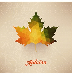 Autumnal maple leaf background made triangles vector