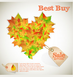 beautiful autumn sale poster vector image