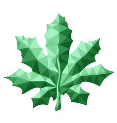 beautiful low poly art with green maple leaf vector image