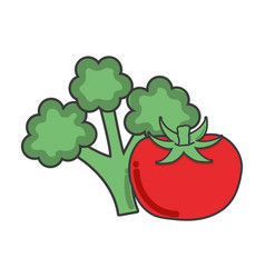 Broccoli and tomatoes healthy delicious vegetable vector