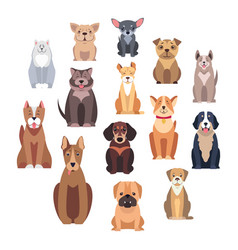 cartoon dog breeds isolated set vector image