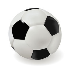 classik soccer ball vector image