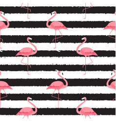 Colorful pink flamingo isolated on white vector