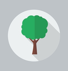 Eco flat icon tree vector