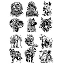 Graphical set african animals isolated on white vector
