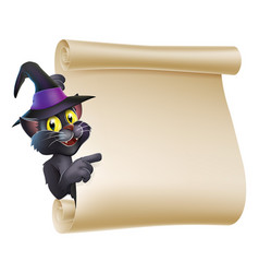 Halloween witch cat scroll vector
