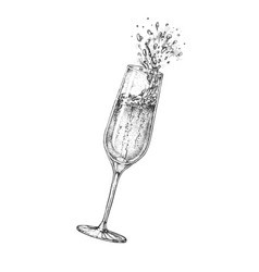 hand drawing champagne glass with splash vector image