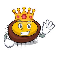 King sea urchin mascot cartoon vector