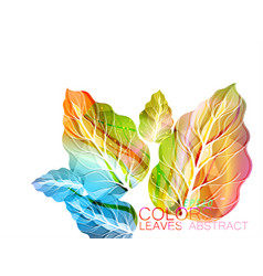 Leaves abstract colors vector