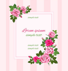 retro greeting with pink roses vector image