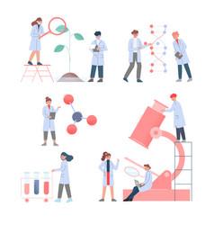 Scientists in lab team bioengineers in white vector