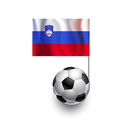 Soccer Balls or Footballs with flag of Slovenia vector image