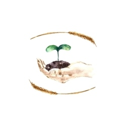 Watercolor hand with sprout vector image