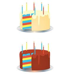 Cream And Chocolate Rainbow Birthday Party Cakes vector image