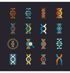 DNA genetic flat icons set vector