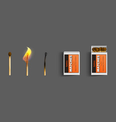 safety matches in box stages burning vector image