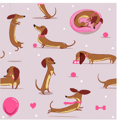 sefvless pattern with cute cartoon dachshund vector image