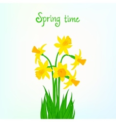 Spring card background with daffodil vector