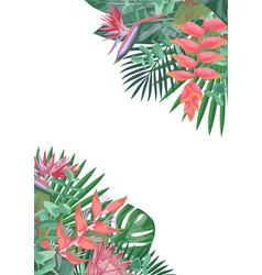 tropical flower angular background vector image