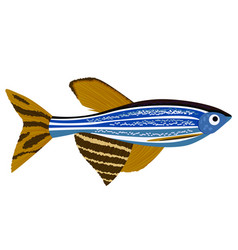 Zebrafish cartoon danio rerio aquarium fish vector