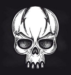 agressive monsters skull on blackboard vector image