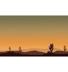 Cactus in desert silhouette vector image