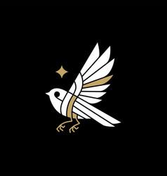 bird star logo icon vector image