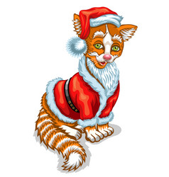 cat santa claus christmas vector image