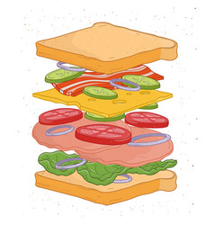 Delicious sandwich with layers or ingredients vector