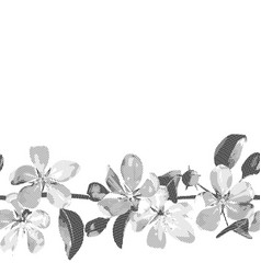 hatched seamless border cherry blossom vector image