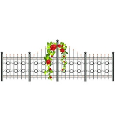 Metal fence and roses vector