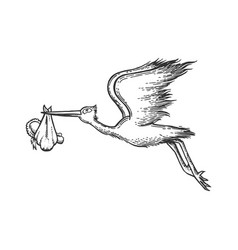 Stork carry baby engraving vector