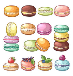 colored of delicious macaroons vector image