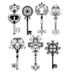 Set of Contoured Keys vector image
