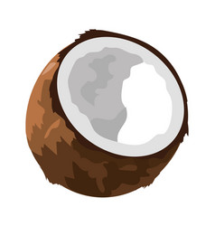 Coconut fruit cartoon vector