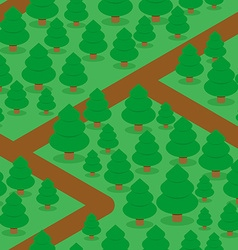 Forest seamless pattern Spruce thicket natural vector image