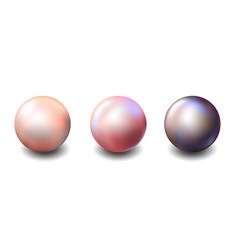 Set multicolored pearls white pink black vector