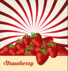strawberry fruit healthy food background vector image