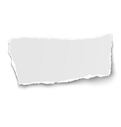 White paper tear isolated on background vector