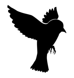 flying sparrow vector image vector image