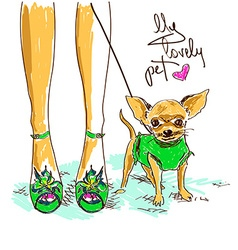 legs of fashion girl and little chihuahua vector image vector image