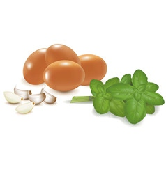 four eggs with basil vector image