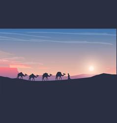 Caravan of camels at sunset arabic desert vector