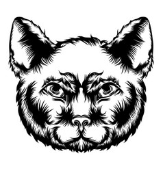 cat animation for tattoo ideas vector image